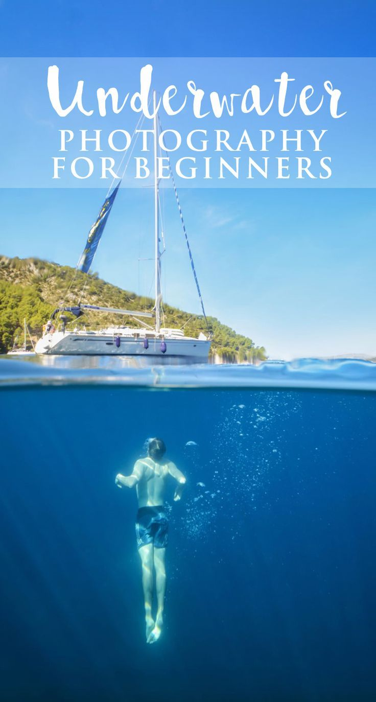 5 Tips for Starting Underwater Photography - Beginners guide to underwater photo...
