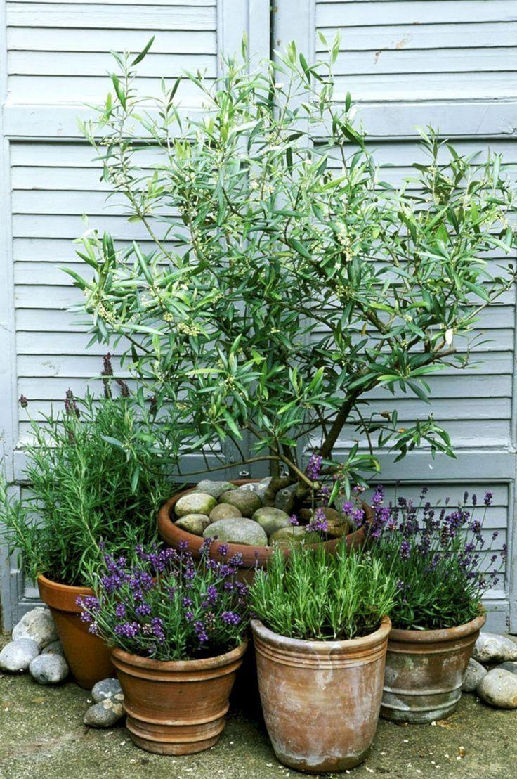 5 unglaubliche Garten-Design-Ideen für Ihre Landschaft #design #garten #ideen #...