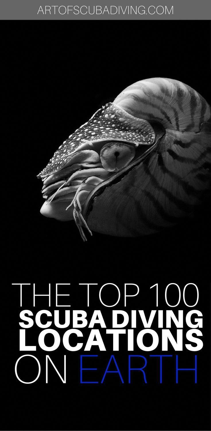 CLICK FOR MORE! #scuba #diving #travel #underwater #photography