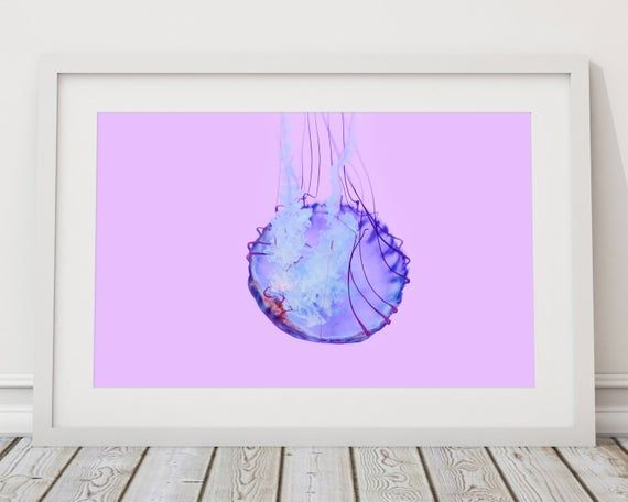 Jellyfish Art, Abstract Art, Underwater Art, Underwater Photography, Jellyfish D...