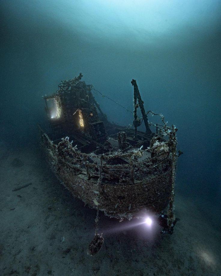 Spectacular Underwater Photography by Alex Dawson #photography #underwater #scub...