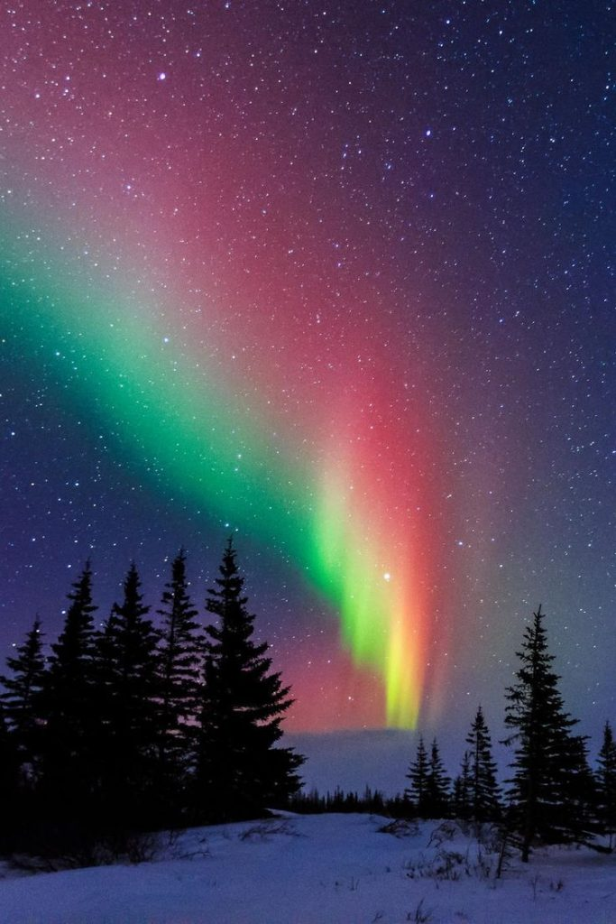 Aurora Over The Trees Of Churchill ~ Manitoba, Canada Repin & Like. Thank you . ...