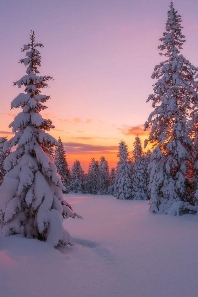 "banshy:  In Embraces of Winter // Marat Akhmetvaleev   Use code ""tumblr"" for..."