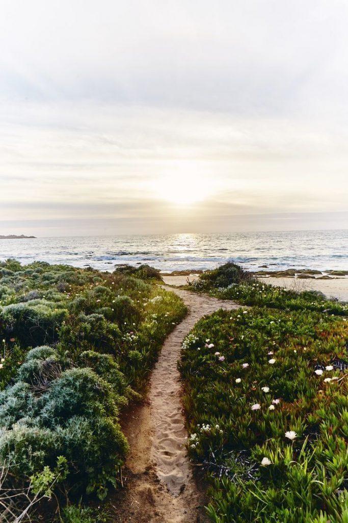 Beautiful path to the beach. Sunrise on the beach.