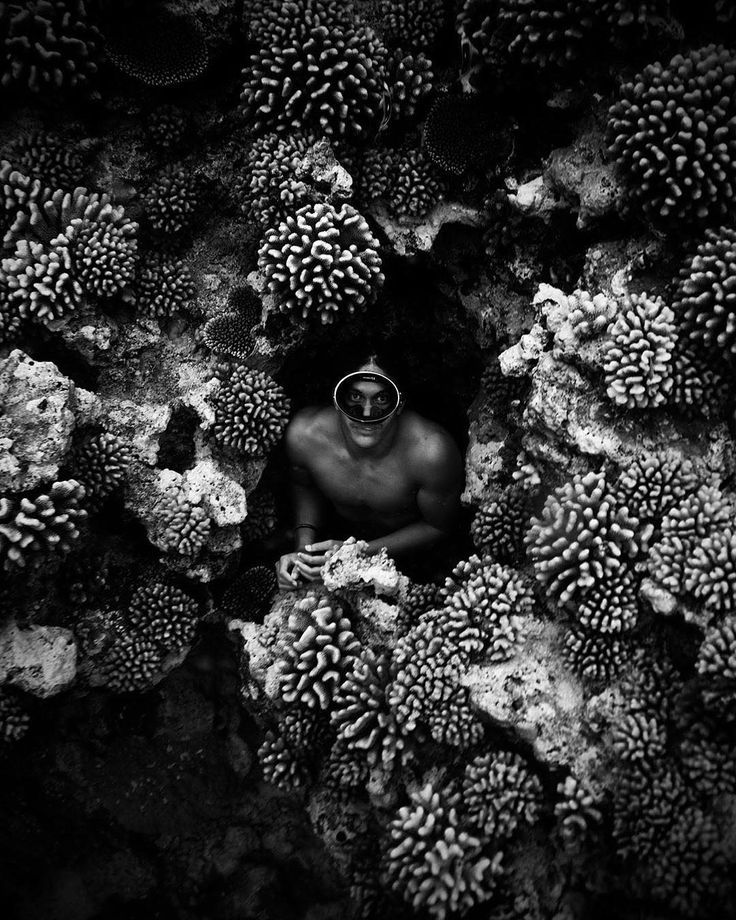 #coral #underwater #photography