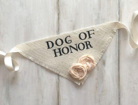 Dog Wedding Bandana Engagement Photos Save the Date Cards Dog