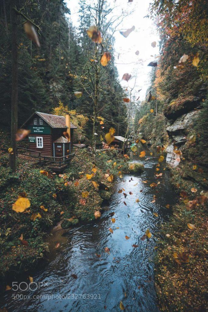 Falling Leaves. (Johannes Hulsch / Leipzig / Deutschland) #Canon EOS 5D Mark III ...