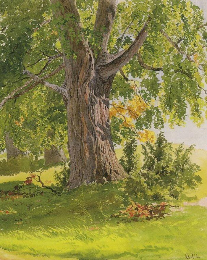 Ivan Shishkin, Oak, Lit by the Sun