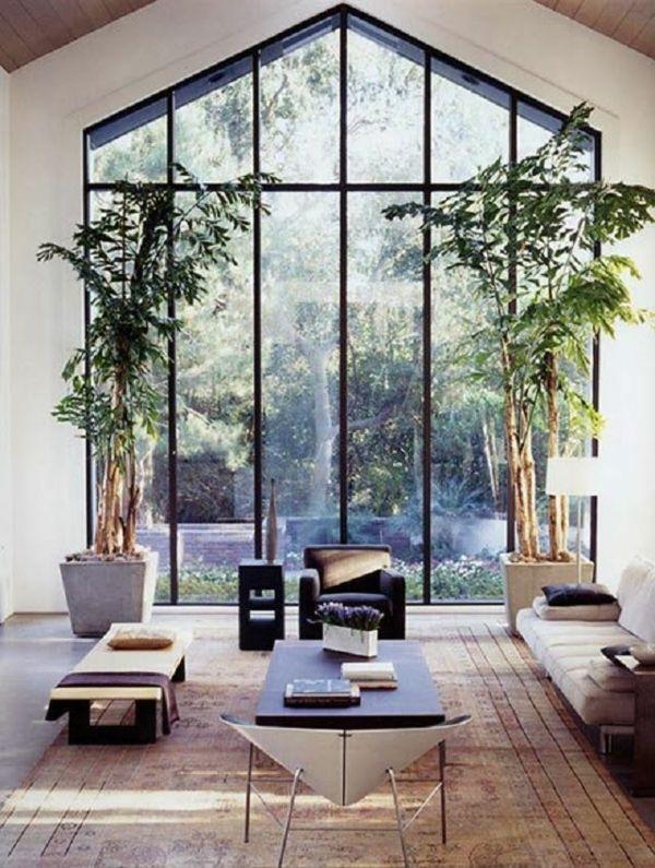 living design plants ideas pictures design open