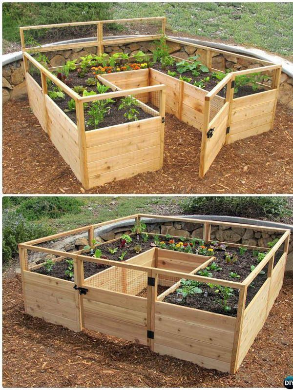Make your own vegetable container to always have healthy food. ...