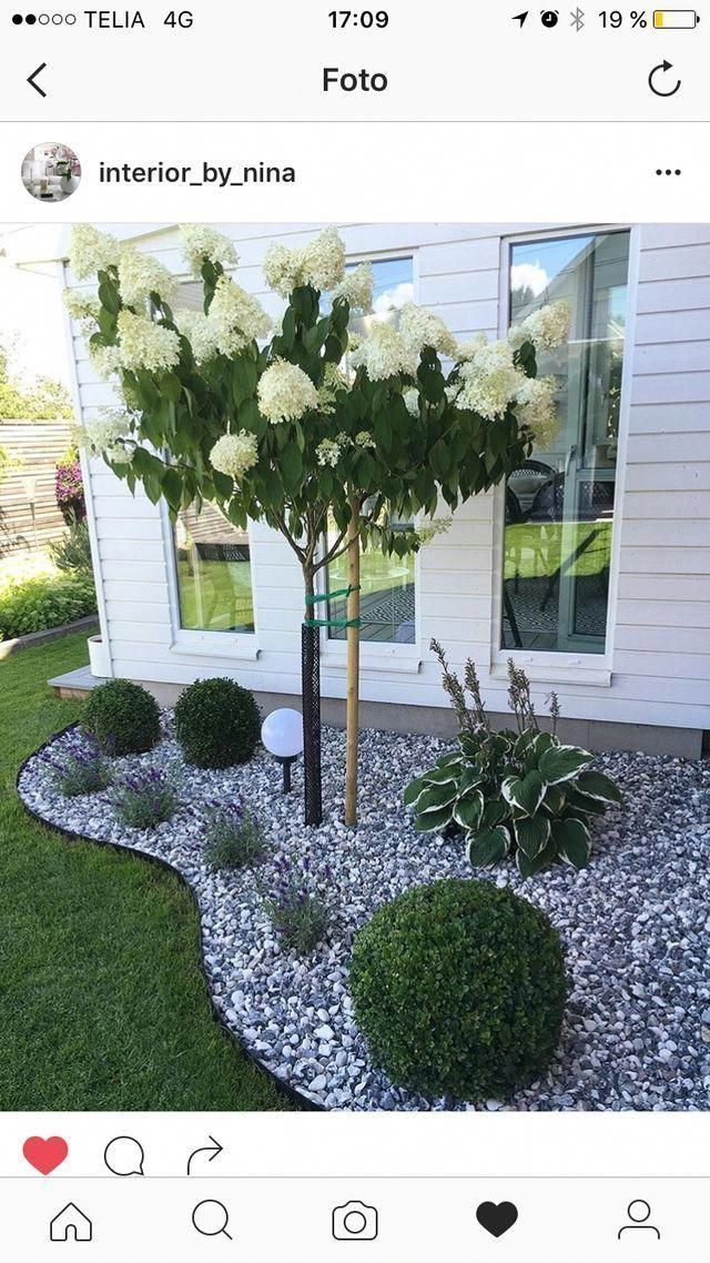 Simple, easy and cheap home improvement ideas for the front garden and backyard ...