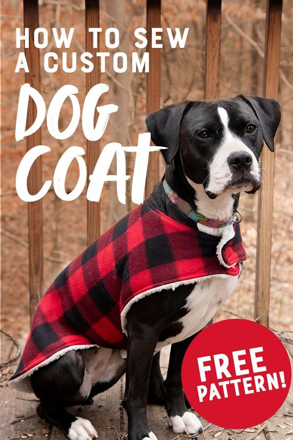 This cozy custom dog coat is a super easy beginner sewing project that is done i...