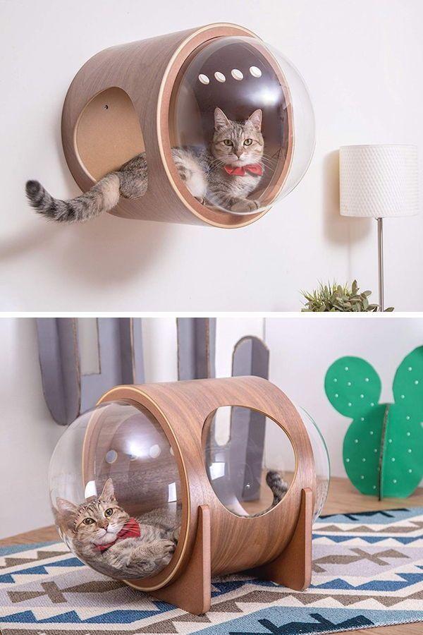 Von einem Raumschiff inspirierte Katzenbetten verleihen Kätzchen einen stellare...