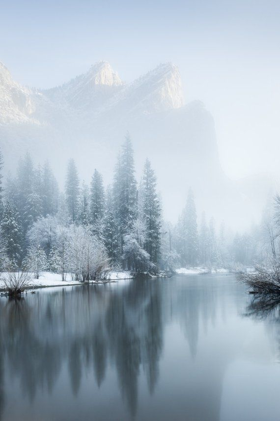 Yosemite winter fog, frost and snow landscape photograph photo print / metal pri...
