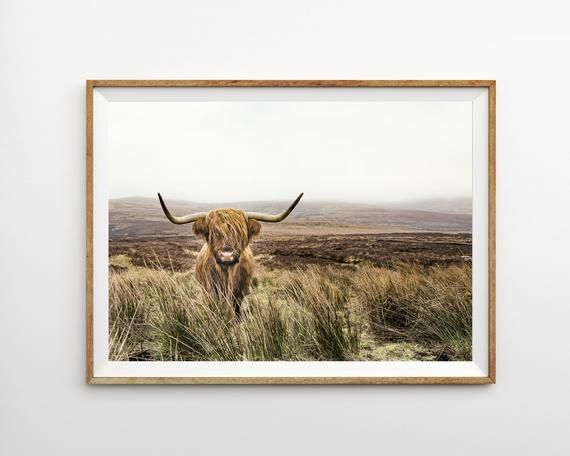 Highland Cow Print Horizontal Wall Art Prints Modern Farmhouse Decor Landscape P...