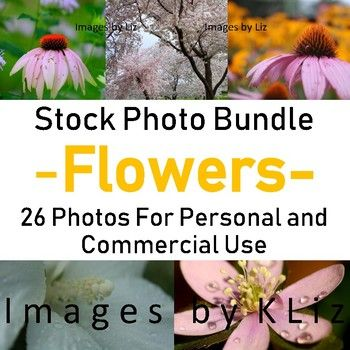 26 Flower Stock Photos for Personal or Commercial Use - Can be used in free or p...