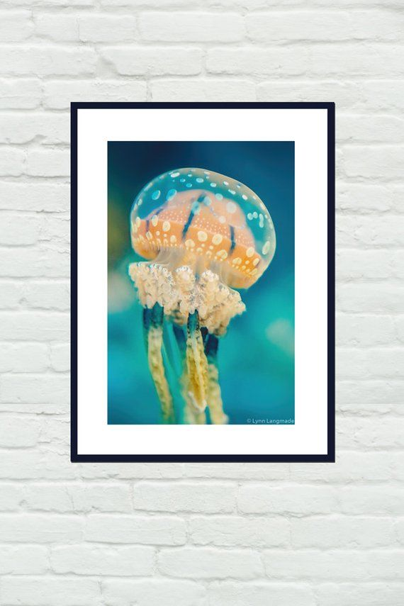 Underwater Photography - orange spotted jellyfish underwater ocean print jellyfi...