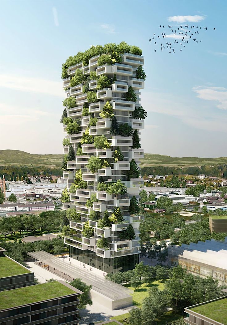 Hundreds of plants grow cars, factories and others at the Nanjing Towers ...