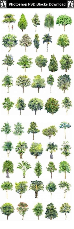 59 Ideas For Landscape Sketch Design Link #design #landscape...