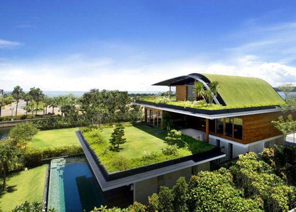 beautiful garden design idea rooftop lawn garden pool ...