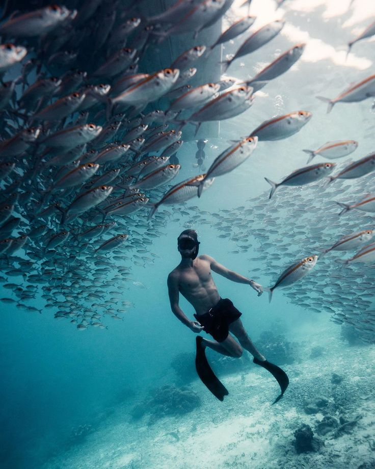 Outstanding Underwater and Adventure Photography by Sam Kølder