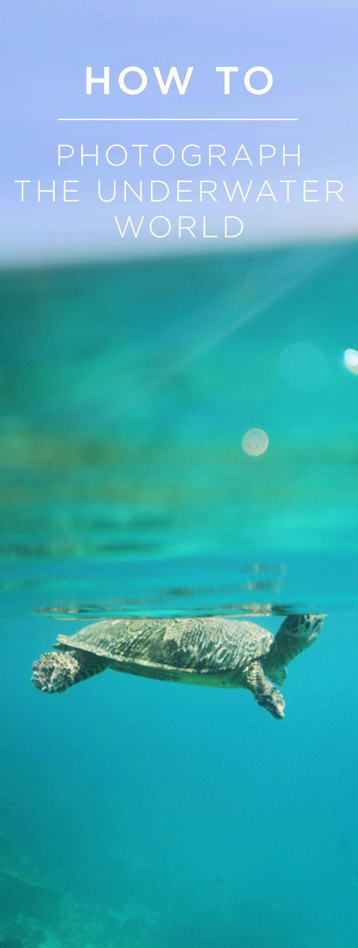27 Amazing Underwater Cameras For Snorkeling Kids Underwater Camera Neck Strap #...,  #Amazin...