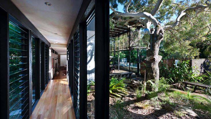 Tropical coastal dwelling merges indoor-outdoor living in Australia...