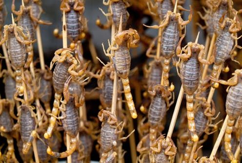 How to get people to eat bugs and drink sewage theconversation.c......